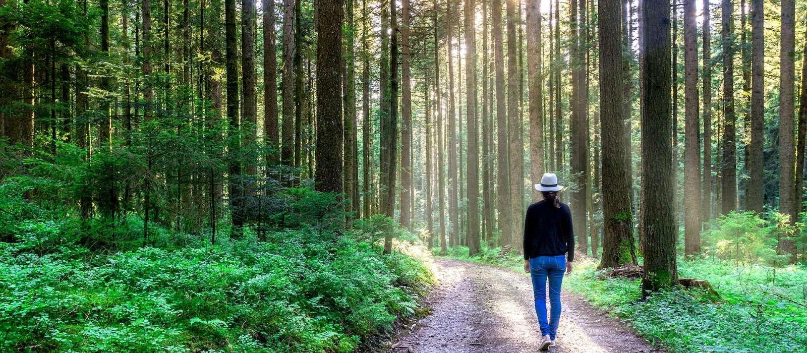 Kleine Auszeit im Schwarzwald